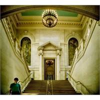 Efsane Kütüphane! Harvard, Widener Kütüphanesi
