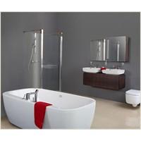 Yeni Banyo ve Sıhhi Dezenfeksiyon Temizleyiciler