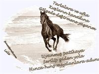 Özgürlük - Zülfü Livaneli (media Player)