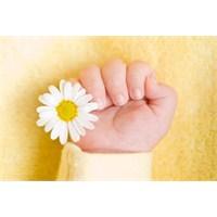 Tüp Bebek Tedavisinde Karşılaşılan Problemler!