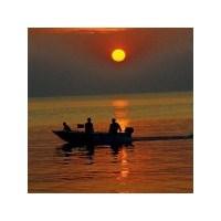 Balık Hikayeleri Ve Deniz Tutkusu… ( Kitap )