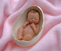 Tüp Bebek Uygulaması Nasıl Olur ?