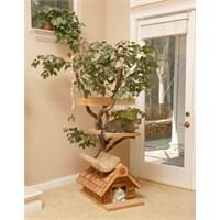 Kedilerimiz İçin Mükemmel Ağaç Evler