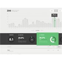 İstatistik Sayfası Tasarımı