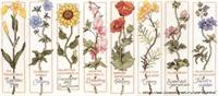 Çiçek Desenli Kaneviçe -etamin Şemaları-1
