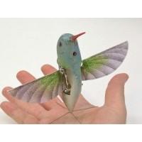 Mini Casus Kolibri – Sinek Kuşu