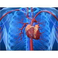 Kalp Hastası Olan Ve Olmayanlar İçin