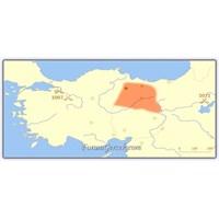 Danişmendliler Beyliği | Anadolu Beyliği