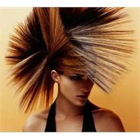 Saç Bakımında Zeytinyağı Etkisi