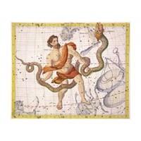 13. Burç Ophicius (Yılancı)