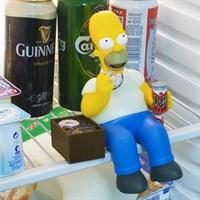Homer Simpson Buzdolabında Nöbette