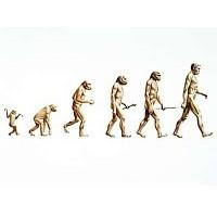İnsanın Evrimi Konusunda Bilmediklerimiz