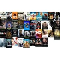 2013 Oscar Adayları; Tüm Dallar; Film Afişleri