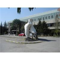 Ankara Aşkım