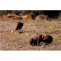 Haydi Blogküre Afrika'ya Yardım Edelim!