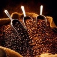 Zeytinyağı Ve Kahve İle Güzelleşmek Artık Mümkün