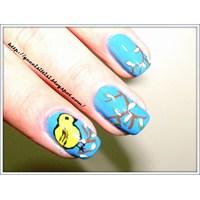 Tırnak Süsleme- Nail Arts(Kuşum)