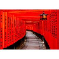 Fushimi İnari Tapınağı