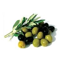 Cilt bakımında zeytin güzelliği