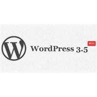 Wordpress 3.5 Beta Sürümü Test Kullanıcıları İçin