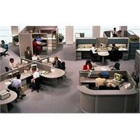 Şirket İçi Ortak Çalışma Kültürü