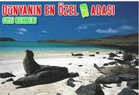 Dünyanın En Özel 5 Adası