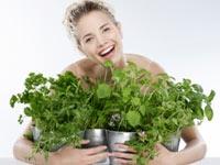 Yeşillikli Doğal Güzellik Reçeteleri