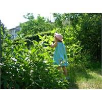 Doğada Vakit Geçirmenin Çocuklara Faydası