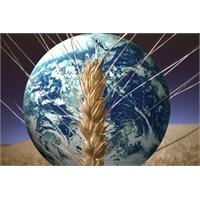 Dünyanın En Büyük Sorunu Açlık