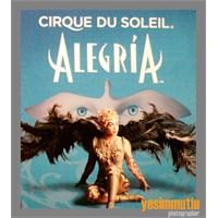 Cirque Du Soleil, Alegría Şovuyla İstanbul'da.