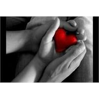 Sevginiz Karşılıksız Mı Testi ?
