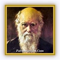 Yurt Ve Dünya Dergisinde Darwin