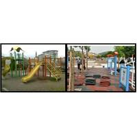 Park, Çocuk Ve Kuşlar