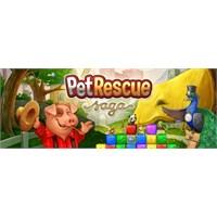 Pet Rescue Saga : Hala Oynamadın Mı ???