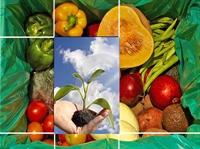 Sahte Organik Ürünler Nasıl Anlaşılır?