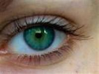 Göz Sağlığımız İçin Yararlı Besinler