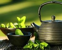 Yeşil Çay Akciğer Kanserini Önlüyor