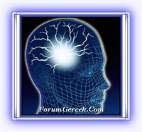 İnsan Beyninin Yeni Bir Sırrı Çözüldü