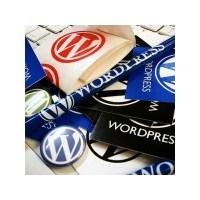 Wordpress Yazısız Etiketleri Silmek