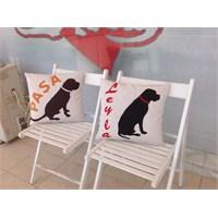 Kedi, Köpek Yastıkları
