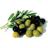 Zeytinin Sağlığa Faydaları