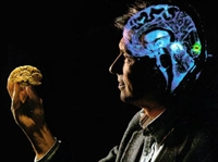 Google Beyne Nasail Faydalı?