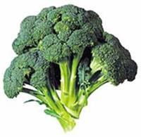 11 Süper Gıda