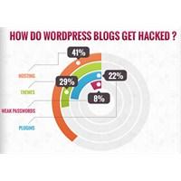 Wordpress'inizi Güvenli Tutun
