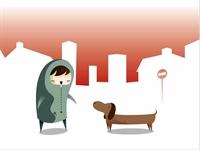 Gel Koçum Sokak Köpeği