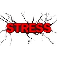 Stresi Yenecek 5 Yiyecek