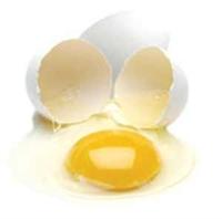Yumurta Kasları Geliştiriyor