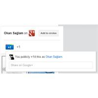 Sitenize Google+ Sayfanızın Widget'ını Ekleyin
