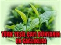 Türk Yeşil Çayı Dünyanın En Sağlıklısı