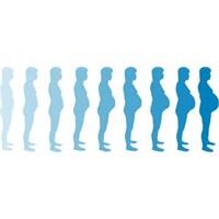 Hamilelikte 21 Hafta